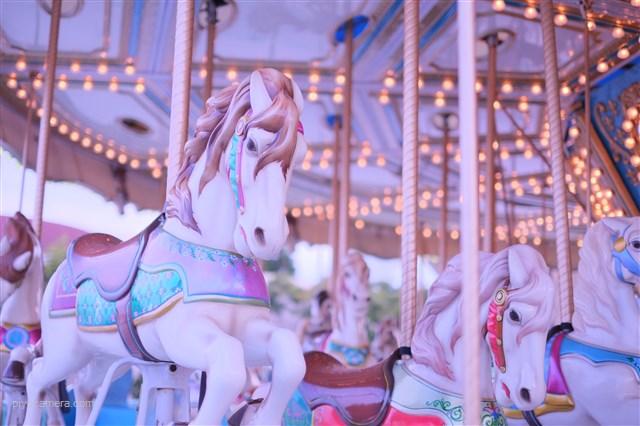 夢の中の世界で動く馬たち