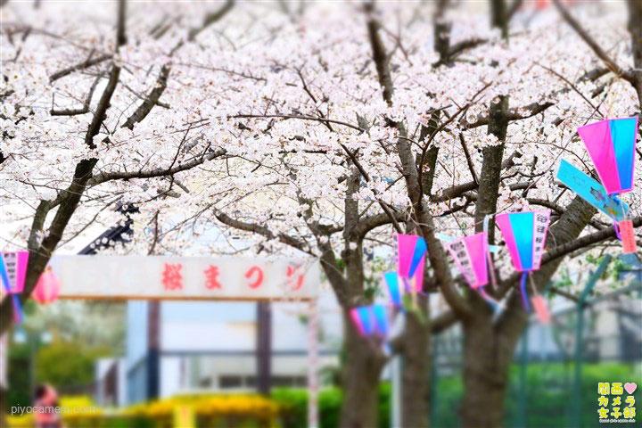 namiki_new