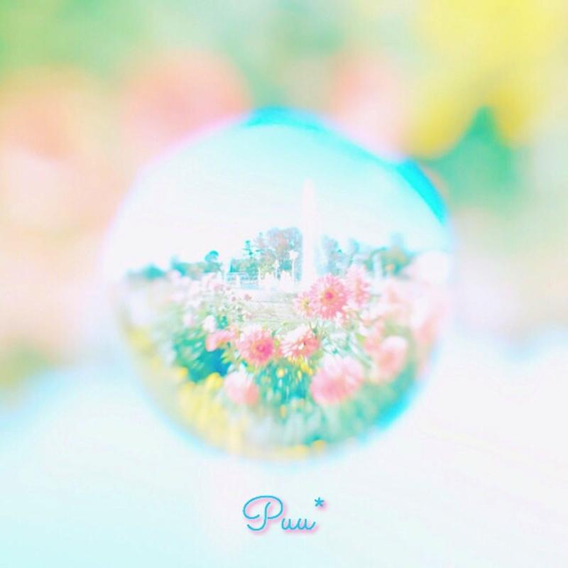 kishi_0002