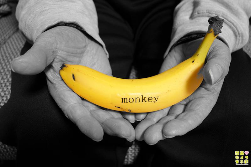 2016干支の猿を連想