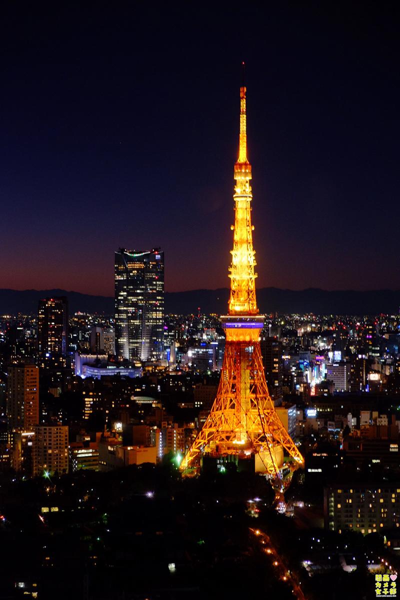 東京タワー04