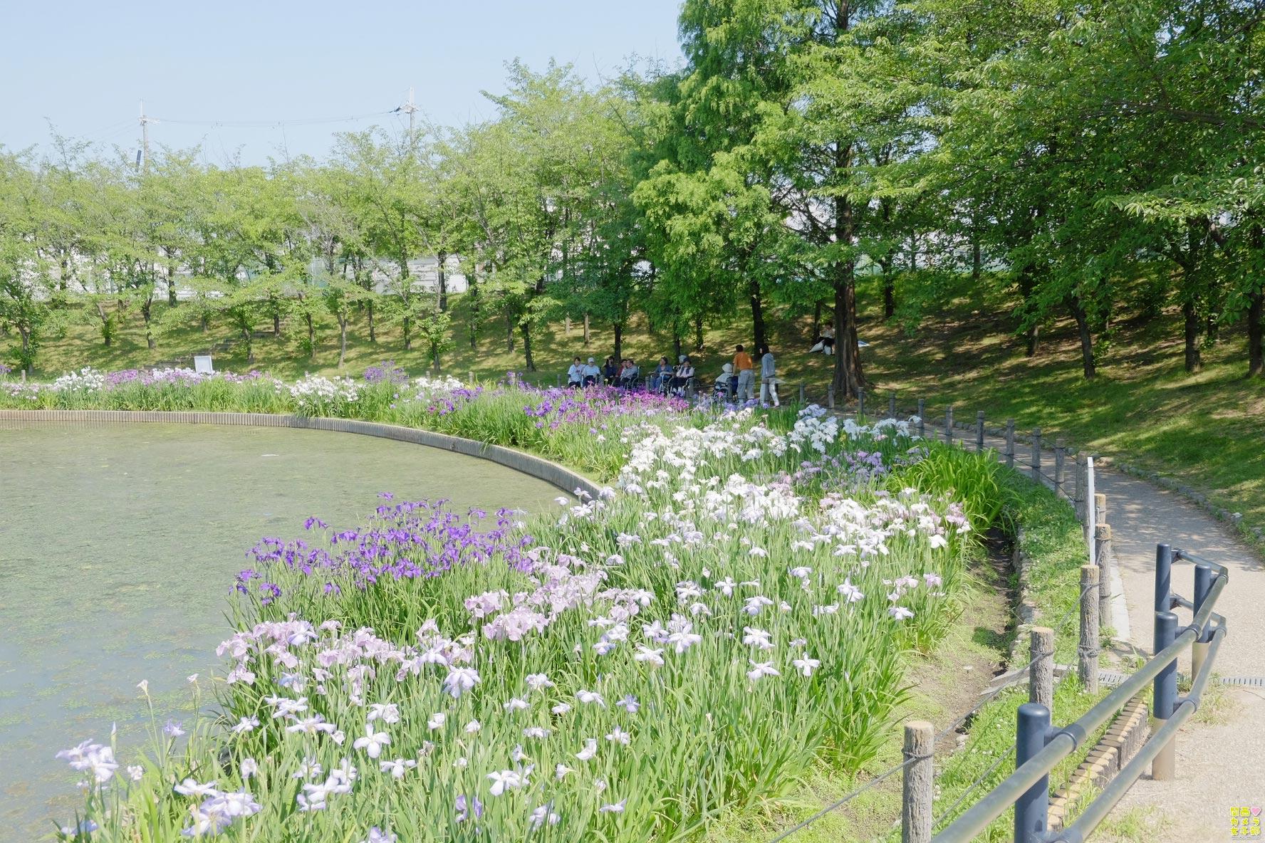 nakada-shirosagipark_IMG_0163