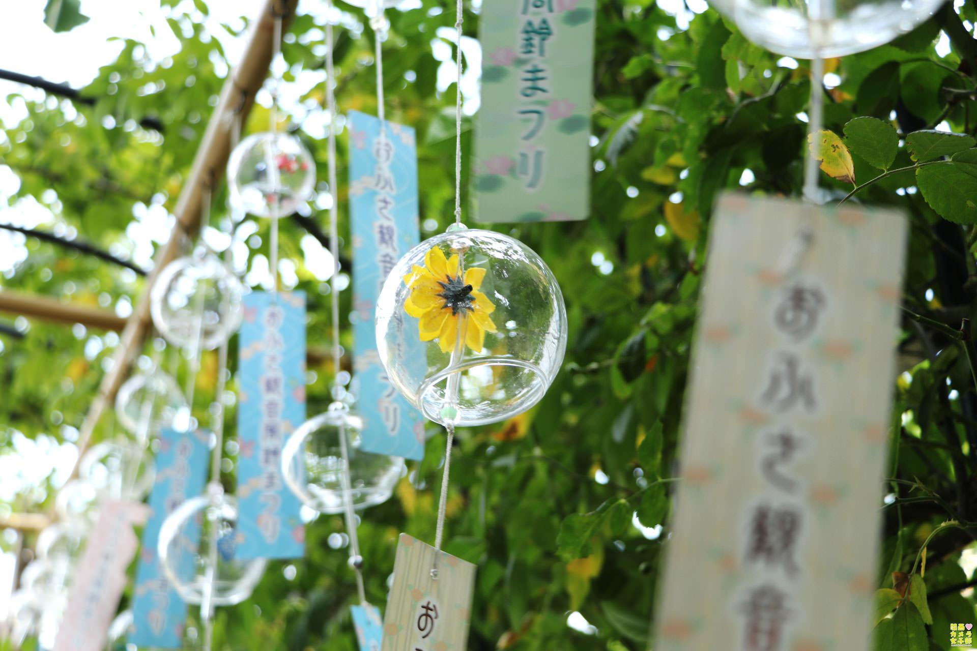 nakada-ofusa_IMG_7953