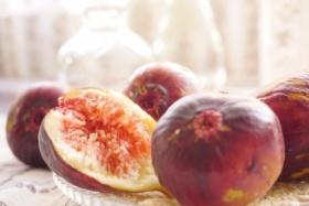 summerfruits_junkoiwaki